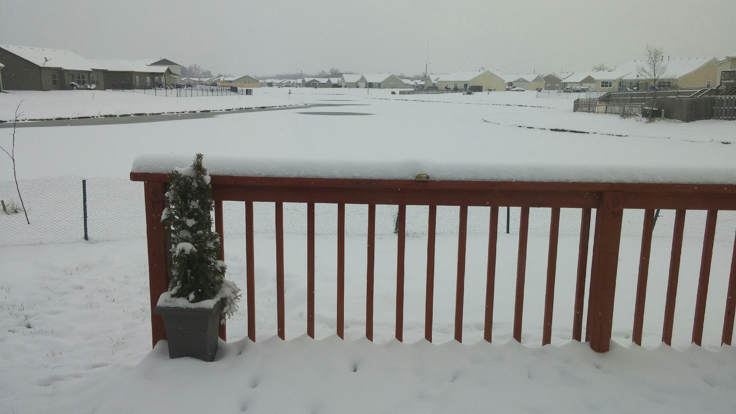 Jan 21 - Snow in Manhattan Cheryl Crowther_172354