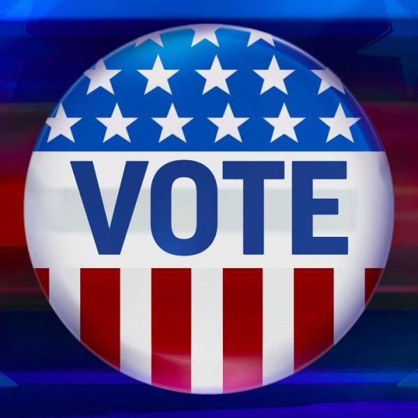 election, voting, vote (AP)_189461