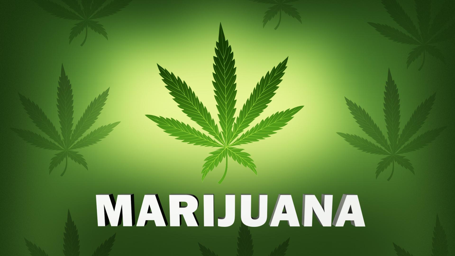 marijuana, weed (AP)_195236