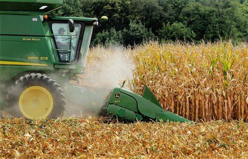 Sugar Vs Corn Syrup_159296
