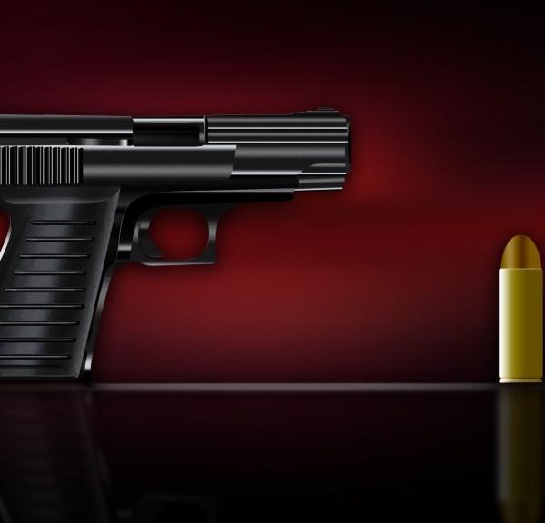 handgun, gun, generic, graphic, shooting, conceal, concealed, carry (AP)_200950