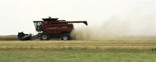 Food and Farm Wheat Tissues_123516