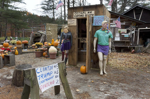 Outhouse Voting Booth_228440