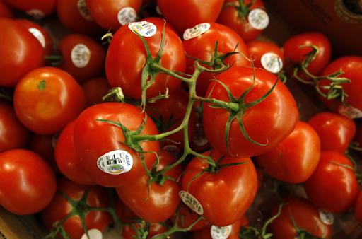 Tastier Tomato_238770