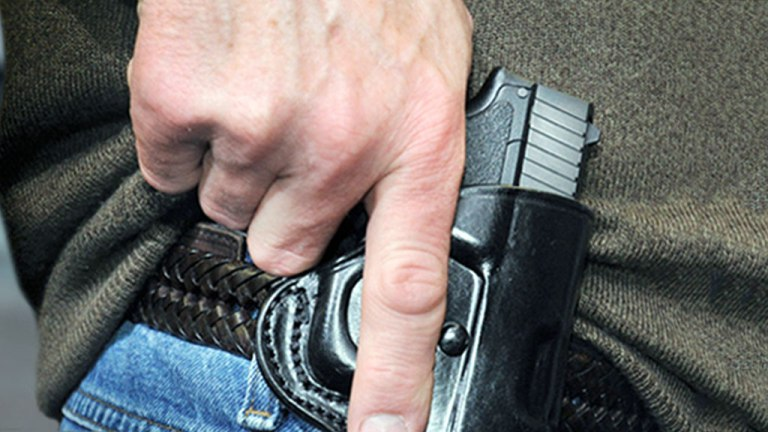 concealed-carry-generic-file-mgfx_368877