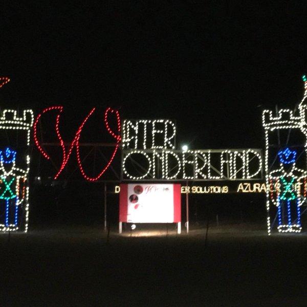Winter Wonderland_367486