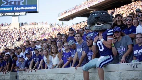 willie the wildcat_1536245480097.jpg.jpg