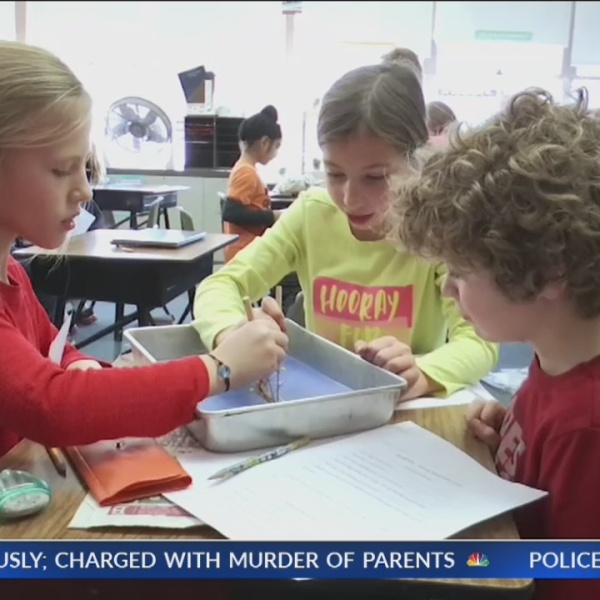 Local 3rd graders dissect worms after reading book