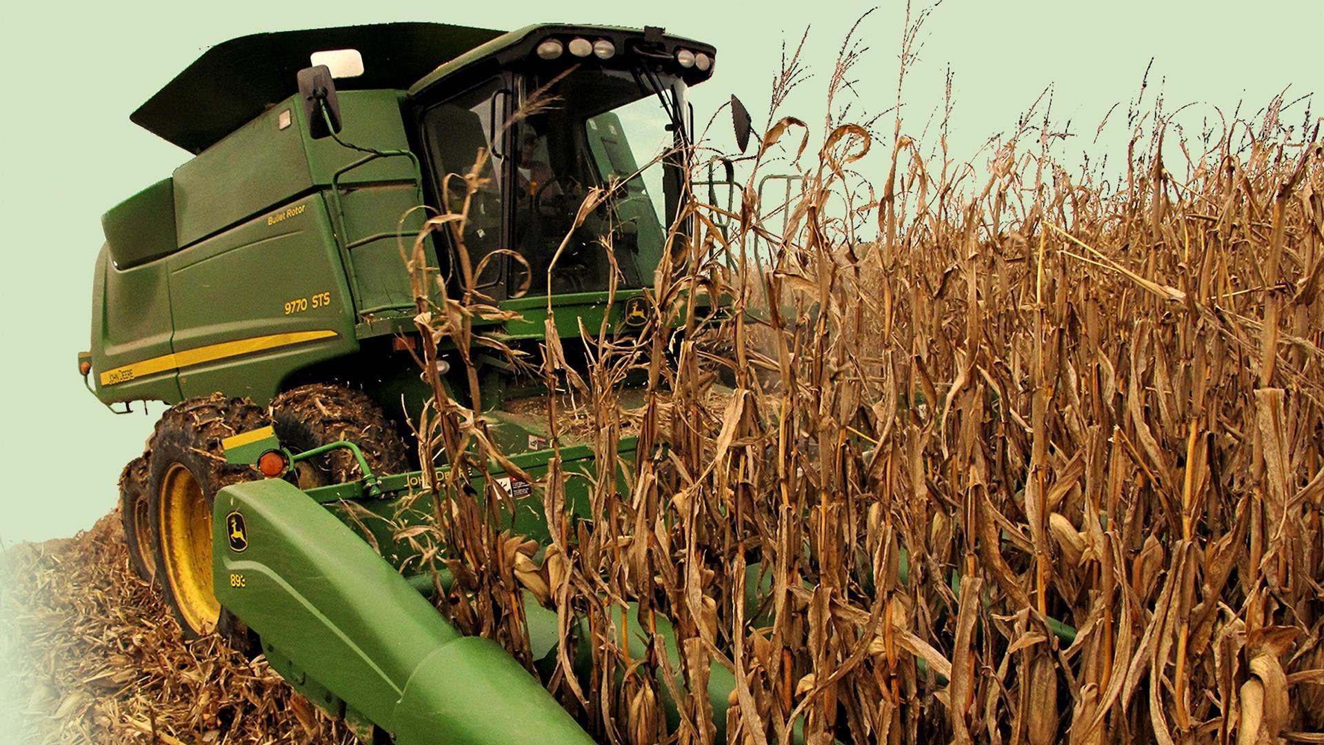 harvest, farm, farming,_227489