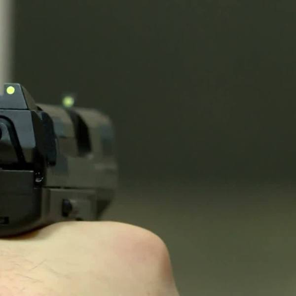 Senator Introduces Disarm Hate Act