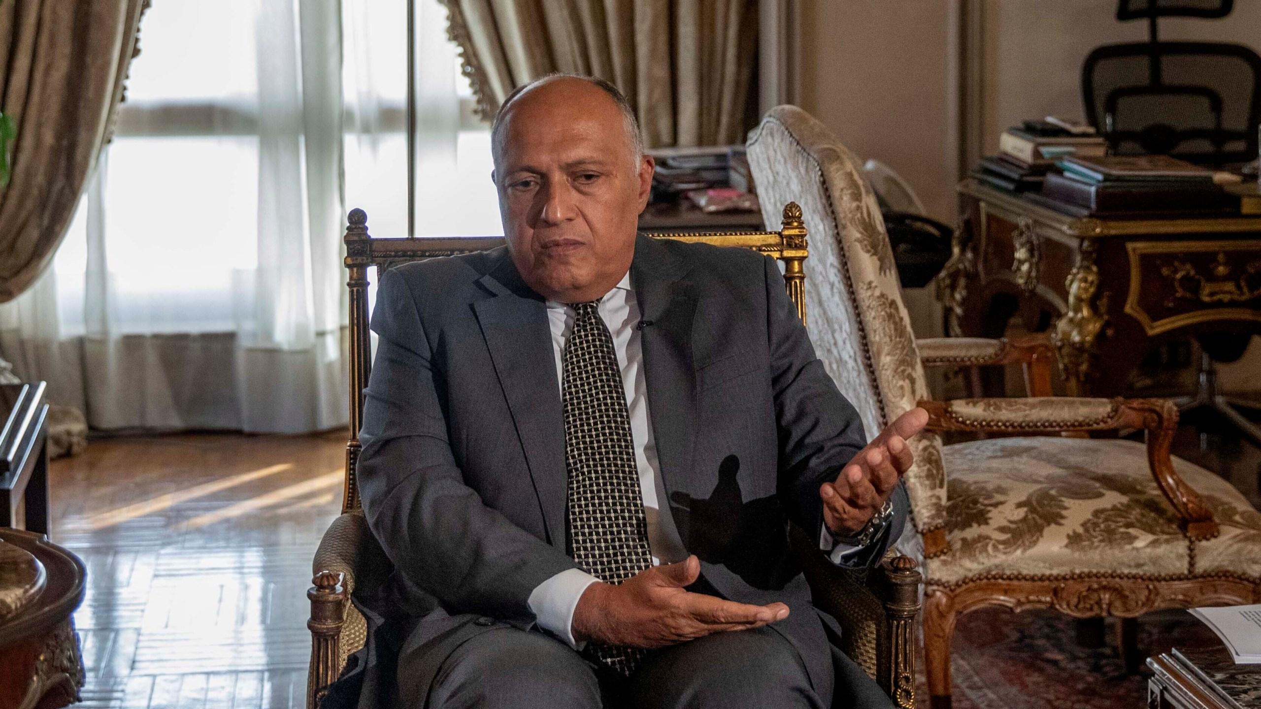 Sameh Shukry